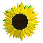 Sunflower created with Malsys.