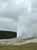 Old Faithful geyser in Yellowstone National Park.