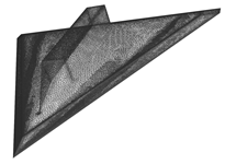 Delta-wing wireframe model - mesh is pretty detailed.