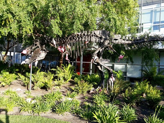 T-rex skeleton with a bunch of hanging flamingos on it in the center of Google campus, because why the hell not?